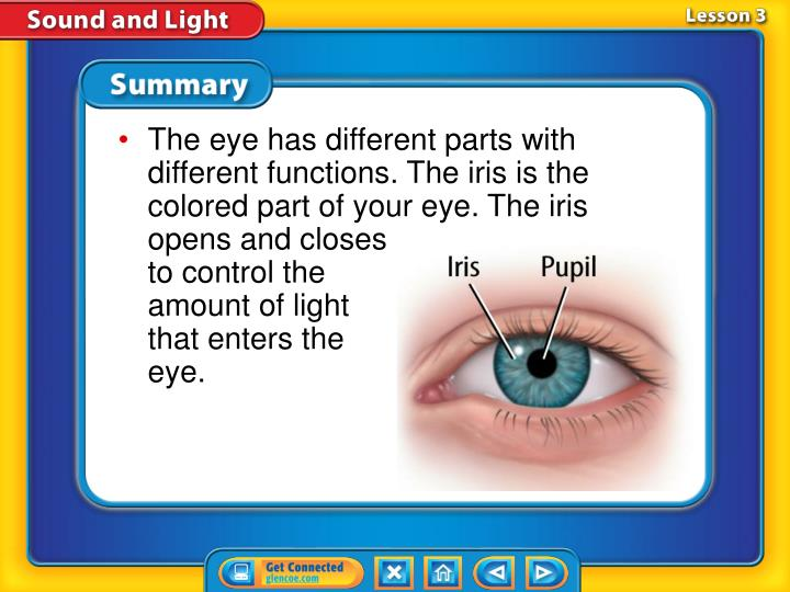 The eye has different parts with different functions. The iris is the colored part of your eye. The iris opens and closes