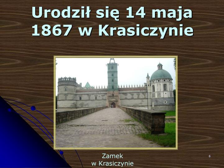 Urodził się 14 maja 1867 w Krasiczynie