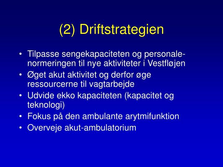 (2) Driftstrategien