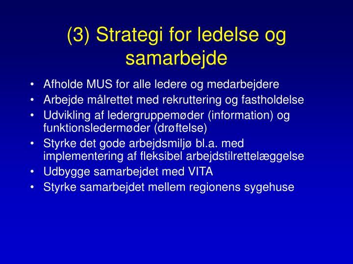 (3) Strategi for ledelse og samarbejde