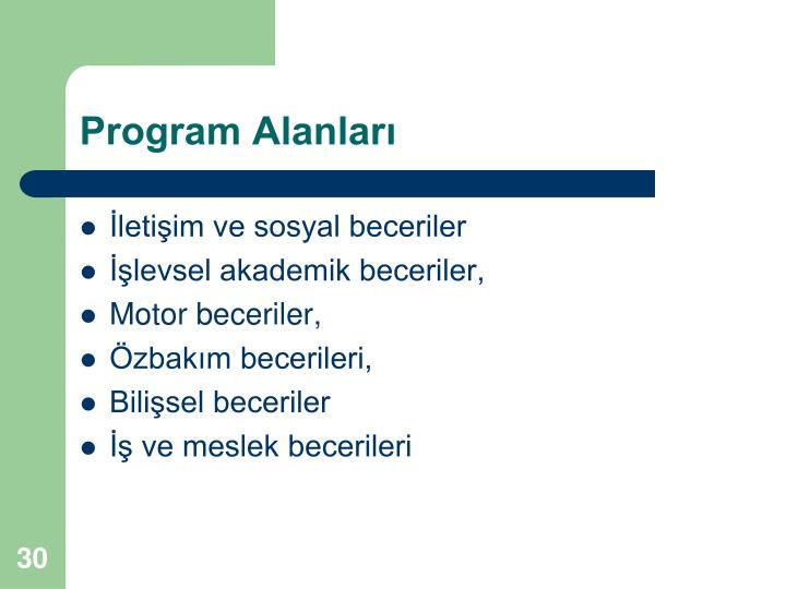 Program Alanları