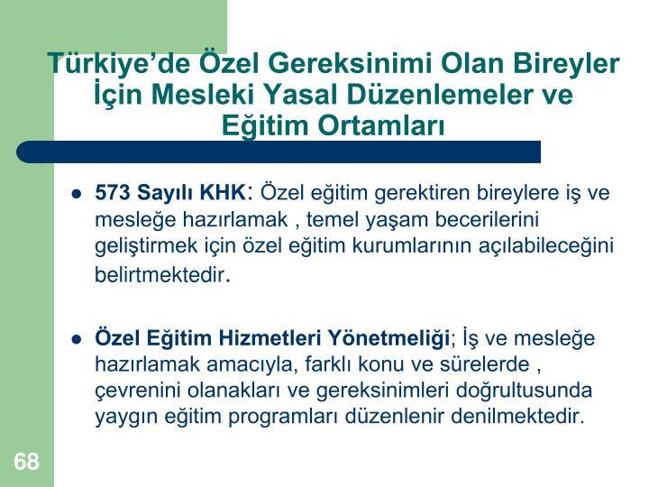 Türkiye'de Özel Gereksinimi Olan Bireyler İçin Mesleki Yasal Düzenlemeler ve