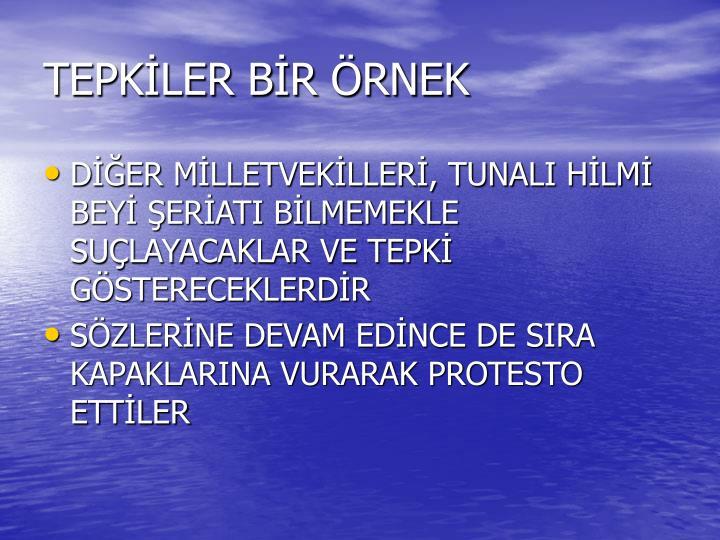 TEPKLER BR RNEK