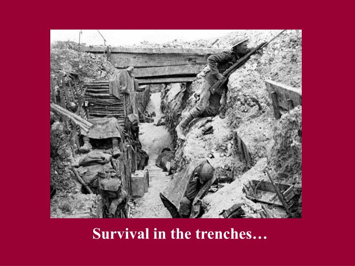 Survival in the trenches…