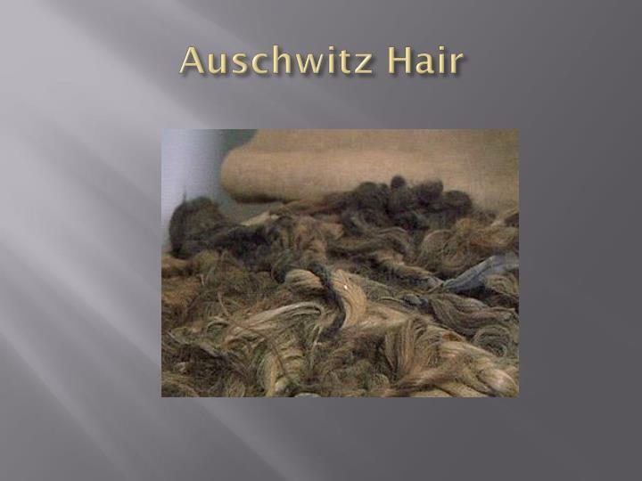 Auschwitz Hair