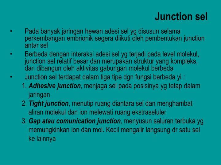 Junction sel