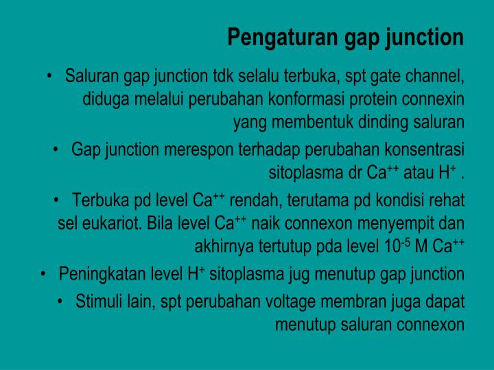 Pengaturan gap junction