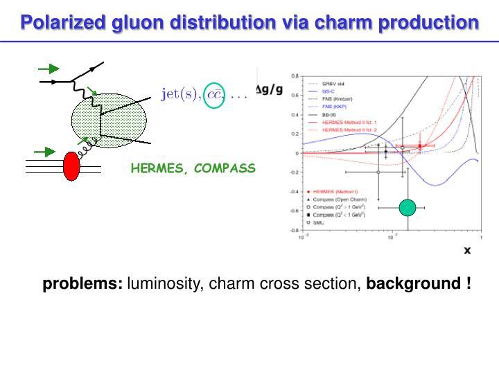 Polarized gluon distribution via charm production