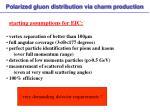 polarized gluon distribution via charm production2