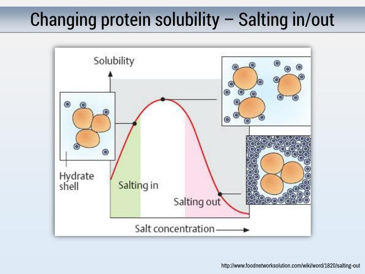Changing protein solubility – Salting in/out