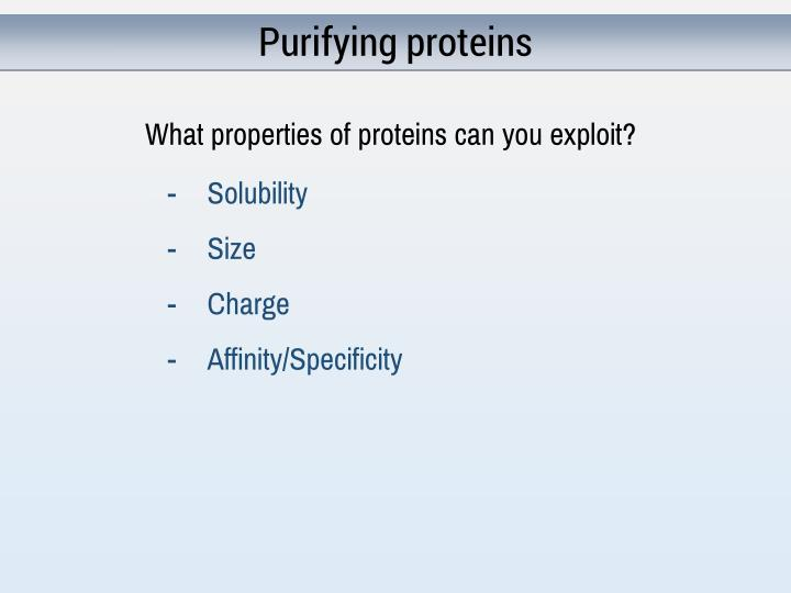 Purifying proteins