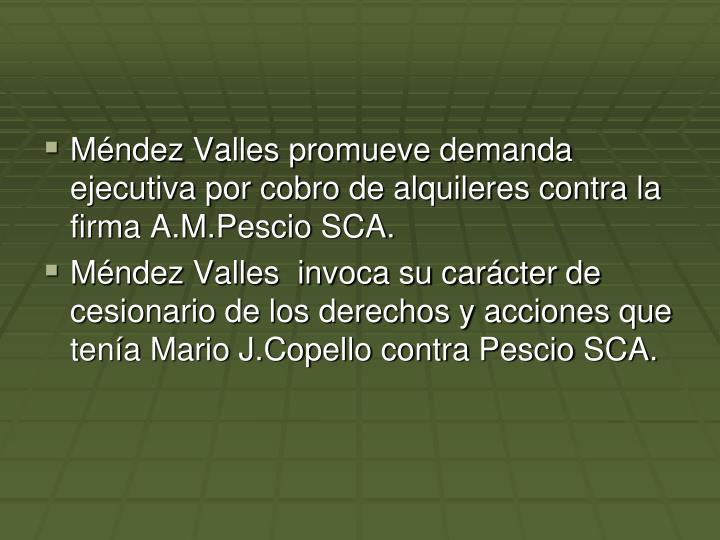 Mndez Valles promueve demanda ejecutiva por cobro de alquileres contra la firma A.M.Pescio SCA.