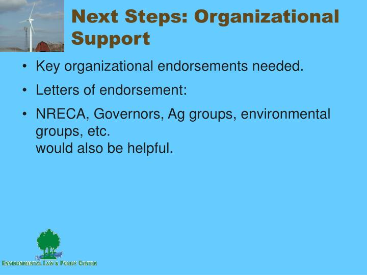 Next Steps: Organizational Support