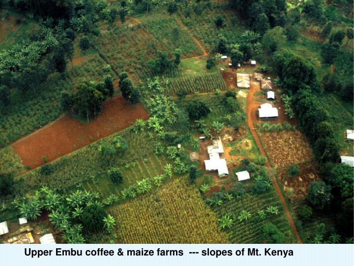 Upper Embu coffee & maize farms  --- slopes of Mt. Kenya
