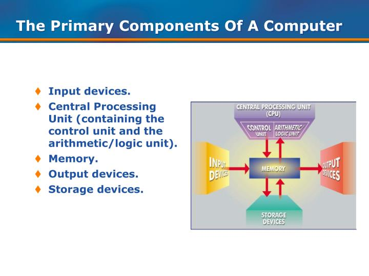The primary components of a computer