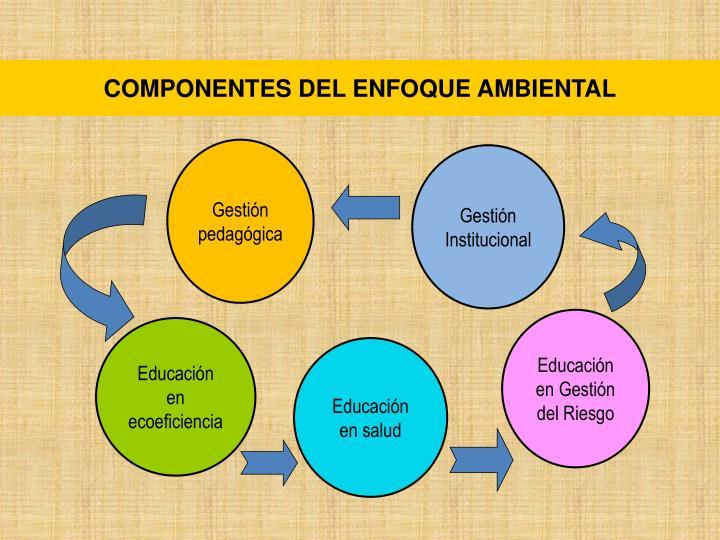 COMPONENTES DEL ENFOQUE AMBIENTAL