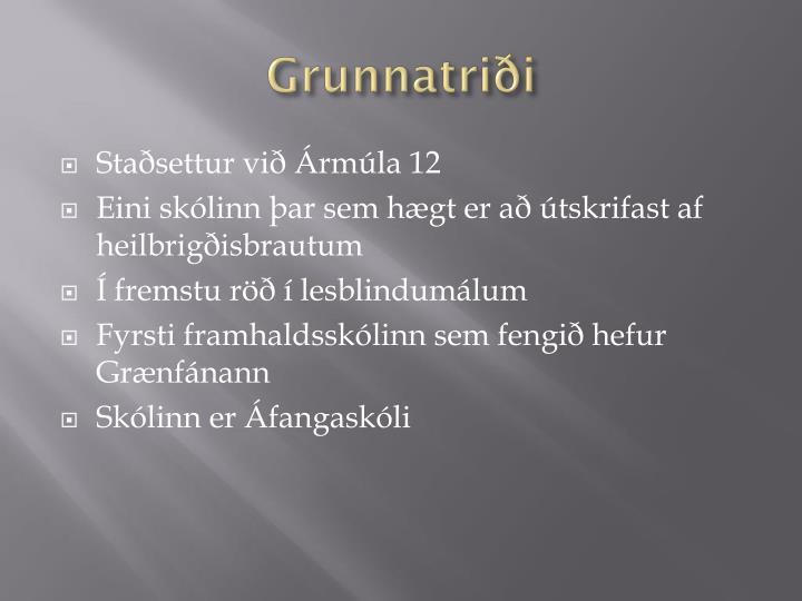 Grunnatriði
