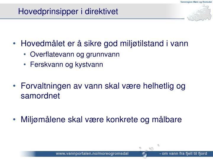 Hovedprinsipper i direktivet