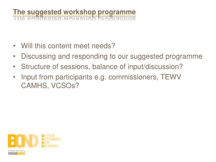 The suggested workshop programme