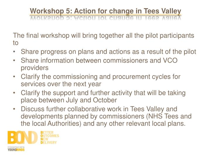 Workshop 5: Action for change in Tees Valley