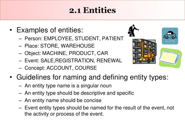 2.1 Entities