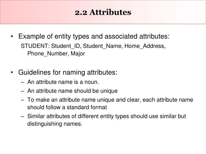 2.2 Attributes