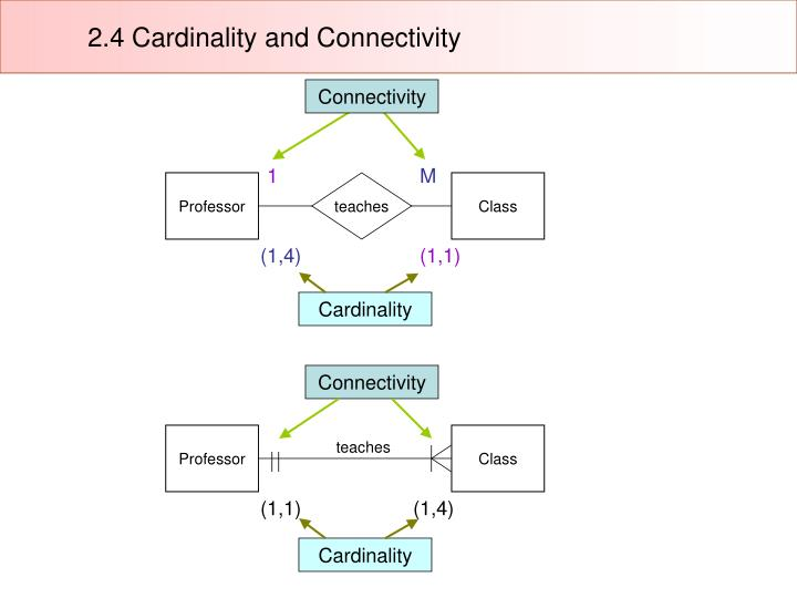 2.4 Cardinality and Connectivity