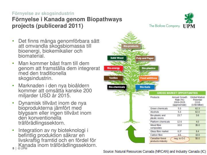Det finns många genomförbara sätt att omvandla skogsbiomassa till bioenergi, biokemikalier och biomaterial.