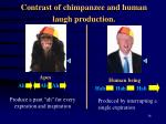 contrast of chimpanzee and human laugh production