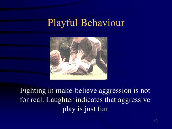 Playful Behaviour