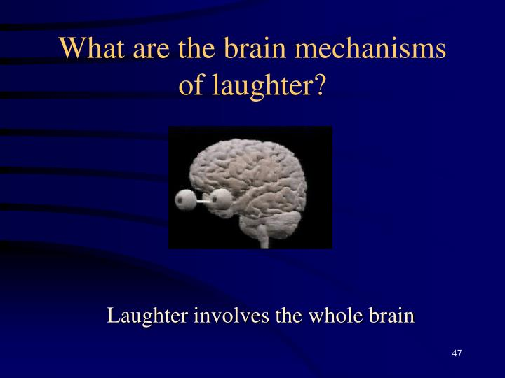 What are the brain mechanisms of laughter?