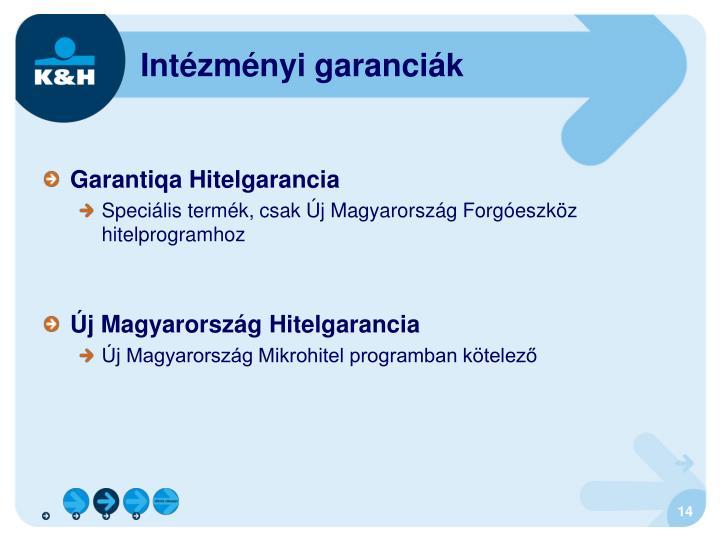 Intézményi garanciák