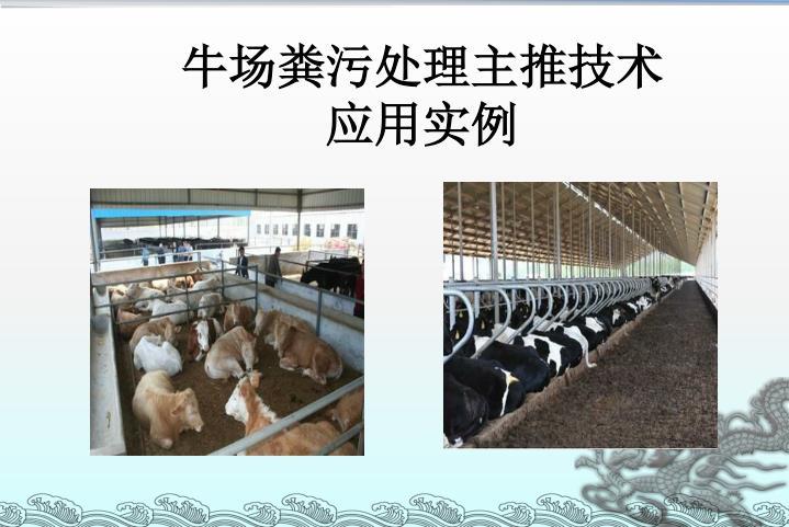 牛场粪污处理主推技术