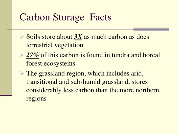 Carbon Storage  Facts