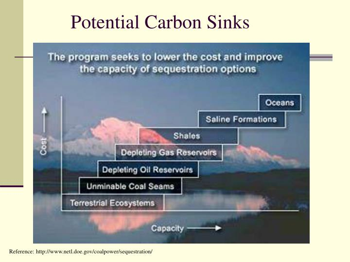 Potential Carbon Sinks