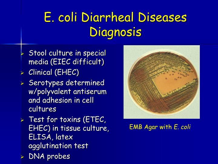 E. coli Diarrheal Diseases Diagnosis