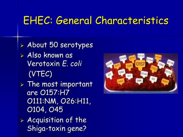 EHEC: General Characteristics