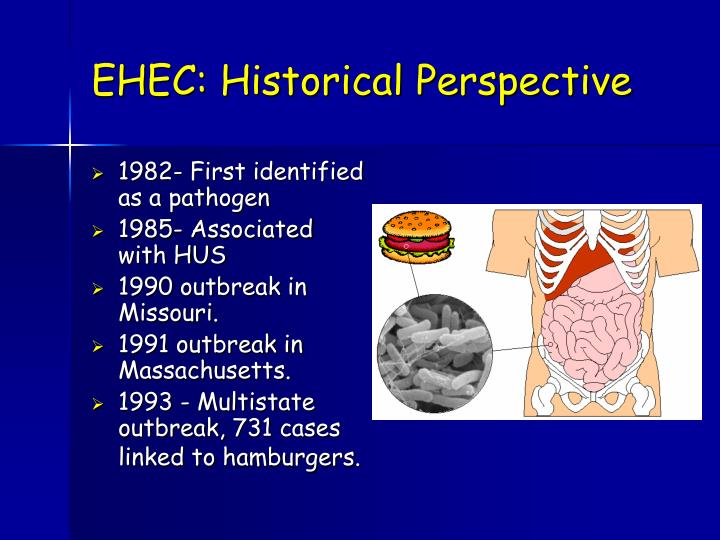 EHEC: Historical Perspective