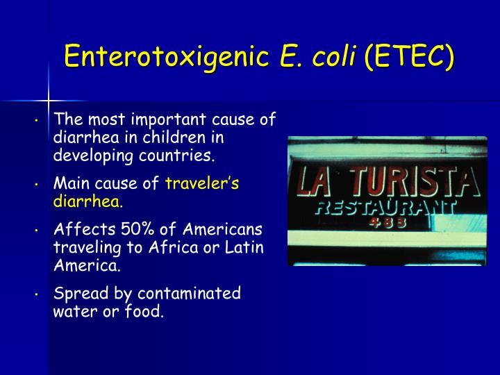 Enterotoxigenic