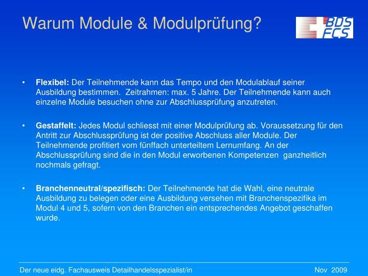 Warum Module & Modulprüfung?
