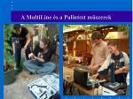 a multiline s a palintest m szerek