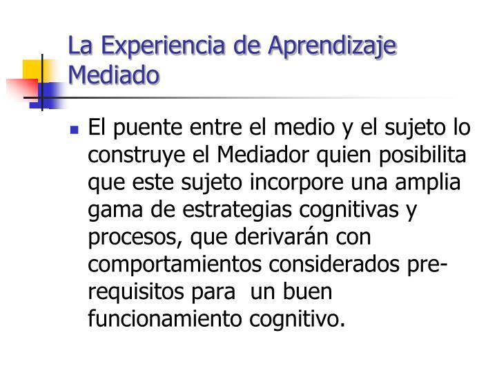 La Experiencia de Aprendizaje Mediado