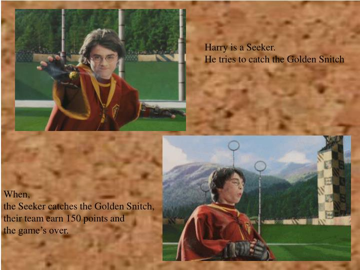 Harry is a Seeker.