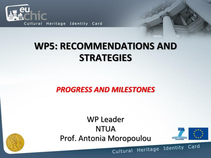 Wp5 recommendations and strategies