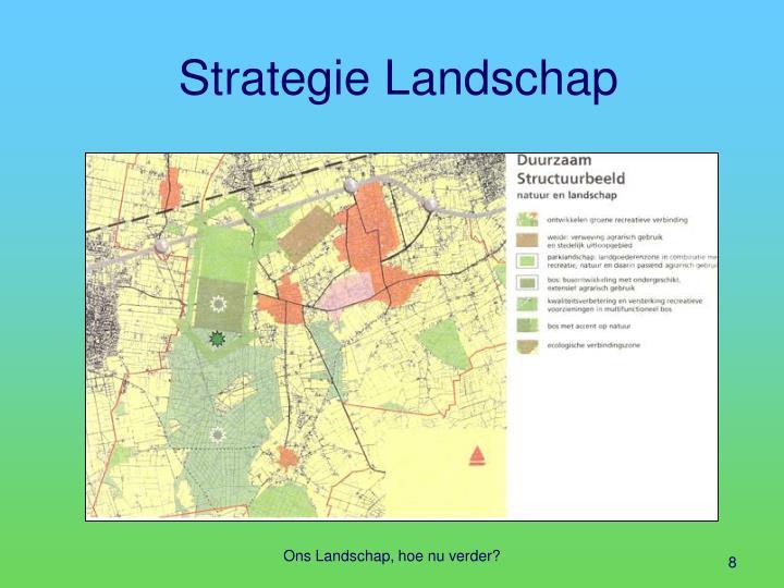 Strategie Landschap