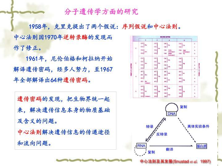 分子遗传学方面的研究