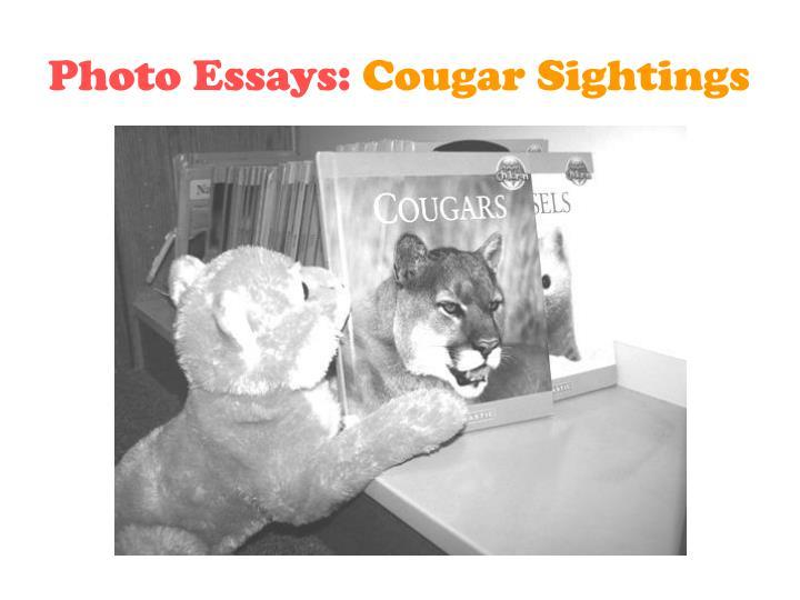Photo Essays: