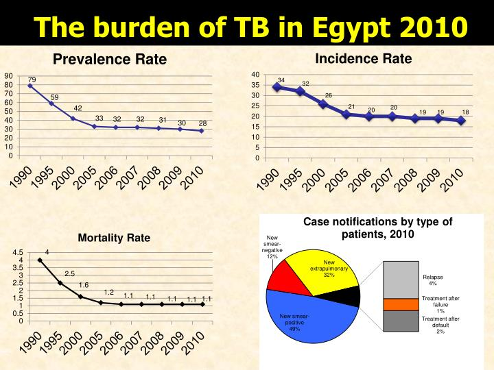 The burden of TB in Egypt 2010