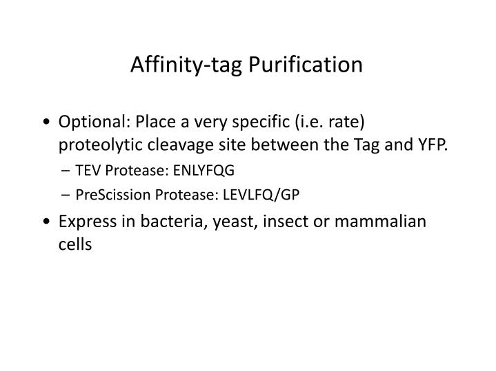 Affinity-tag Purification