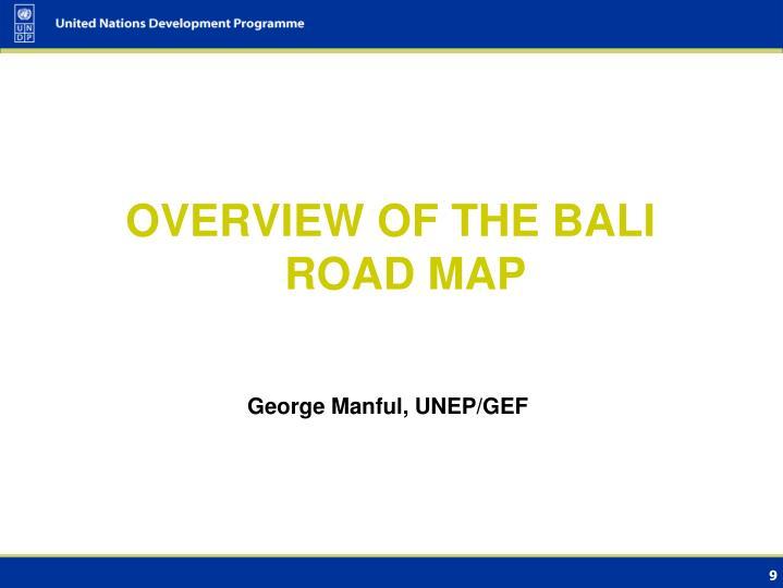 George Manful, UNEP/GEF